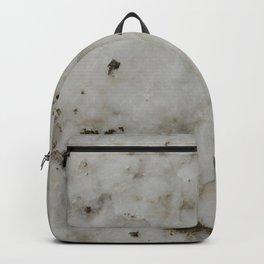 alabaster Backpack
