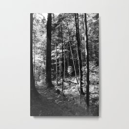 Forest black and white 16 Metal Print