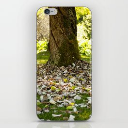 Autumn in the Park iPhone Skin
