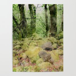 Watercolor in the Woods Edit Poster
