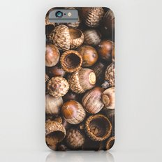 Squirrel Harvest iPhone 6s Slim Case