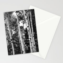 Aspen Forest - Black And White Nature Photography Stationery Cards