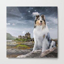 Blue Merle Rough Collie at Eilean Donan Castle in Scotland under a Starry Sky Metal Print