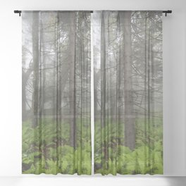 Great Smoky Mountains National Park - Forest Fern Adventure Sheer Curtain