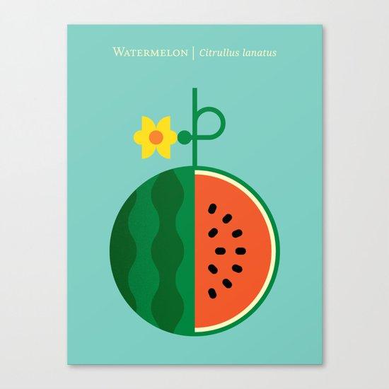 Fruit: Watermelon Canvas Print