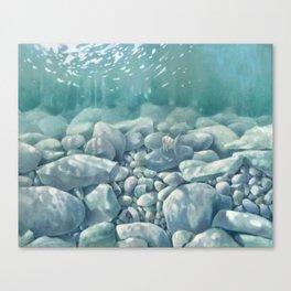 Vermont Stream Bed Canvas Print