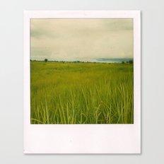 Adjumani Field Canvas Print
