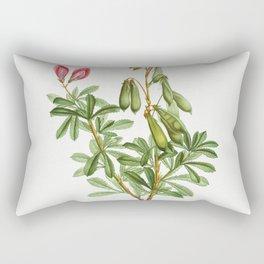 Ononis fruticosa from Traite des Arbres et Arbustes que lon cultive en France en pleine terre (1801- Rectangular Pillow