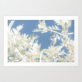 White Plants over Blue Sky Art Print