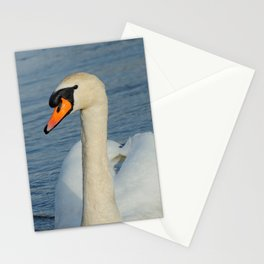 Elegant Mute Swan in the Harbor Stationery Cards