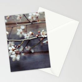Plum and Mocha Stationery Cards