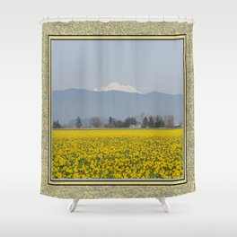 DAFFODIL FIELD AND MOUNT BAKER IN THE SKAGIT VALLEY  Shower Curtain