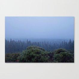 Snowing in Oregon Canvas Print