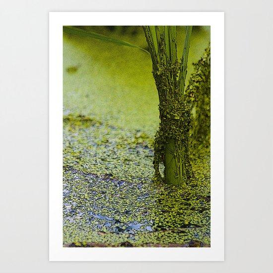 Swamp Things Art Print