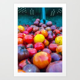 Heirloom Tomatoes V. 2.0 Art Print