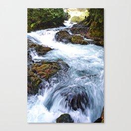 A river runs through it.  Canvas Print
