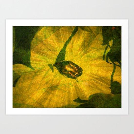 Jewel Bug. Art Print