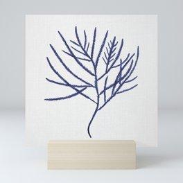Seaweed 3 Mini Art Print