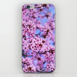 """Pink world"" iPhone Skin"