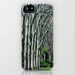 Fitzroy Gardens iPhone Case