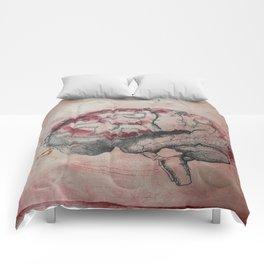 Yeongjun Grade 6 Comforters