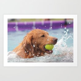 Splashing Around Art Print