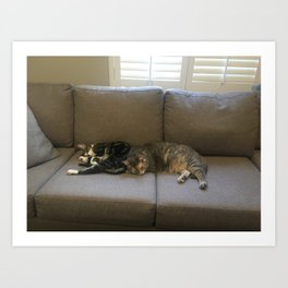 Maya and Pisco Couch Art Print