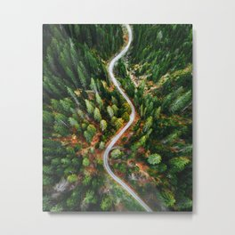 winding road aerial view Metal Print