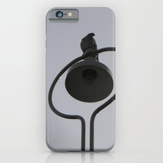 Bird of Love Slim Case iPhone 6s