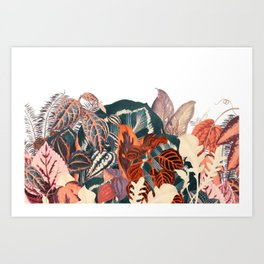 Native II Art Print