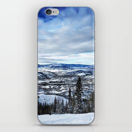 Bluebird Day iPhone Skin
