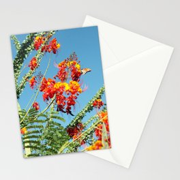 Ocotillo Blooms Stationery Cards