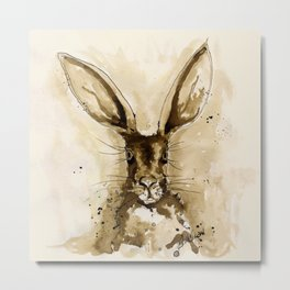 Little Hare  Metal Print