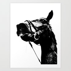 ALFRED THE HORSE Art Print