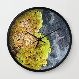 Stone Mosses Wall Clock