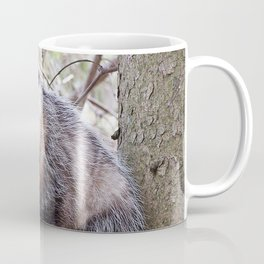 Possum Staredown Coffee Mug