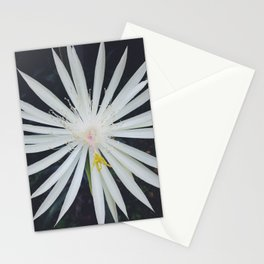 Night Blooming Cactus Stationery Cards