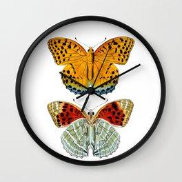 Butterflies (Argynnis Childreni) Wall Clock