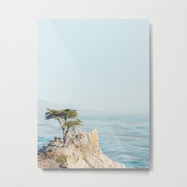 Lone Cypress Tree - Coastal California Landscape Photography Metal Print