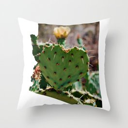 Sonoran Love / Arizona Throw Pillow