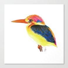 Kingfisher II Canvas Print