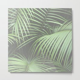 Green Palm Leaf Nature Coastal Tropical Leaves Metal Print