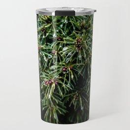 Coniferous Rainforest Travel Mug