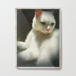 Courage Tamed  Metal Print