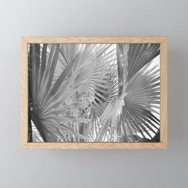 Black and White Fan Palm Framed Mini Art Print