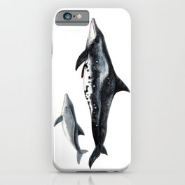 Rough-toothed dolphin (Steno bredanensis) iPhone Case