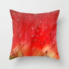 Callistemon's secret 2517 Throw Pillow