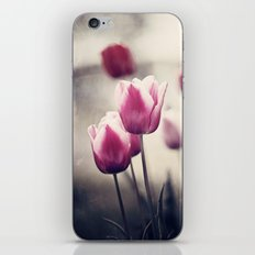 Pink Tulip Flower Photography, Dark Pink Black Floral Nature Tulips iPhone & iPod Skin