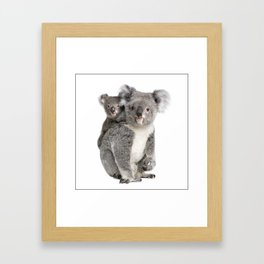 Koala bear and her baby Framed Art Print