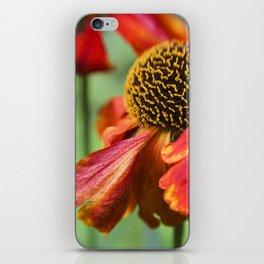 Orange in Flowers iPhone Skin
